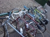 thorn2-09-2011-034